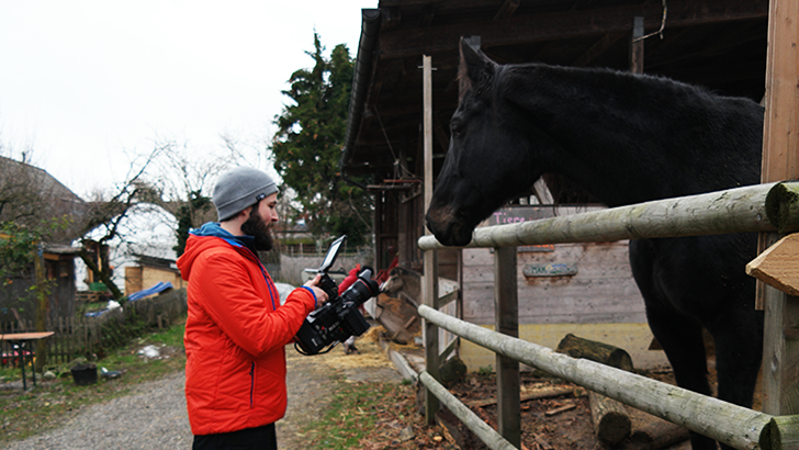 Moritz from the camera team while filming a large black horse outside.